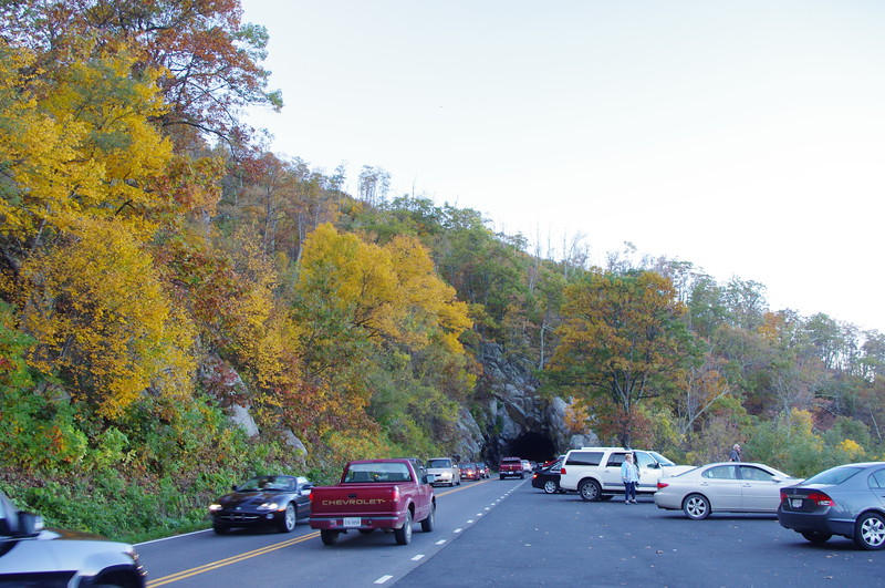 Busy day on Skyline Drive<br /> 10/15/2011