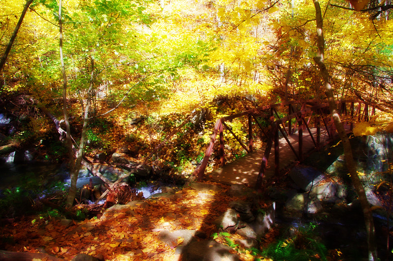 Bridge on the Rose River Trail - soft focus effect<br /> 10/15/2011