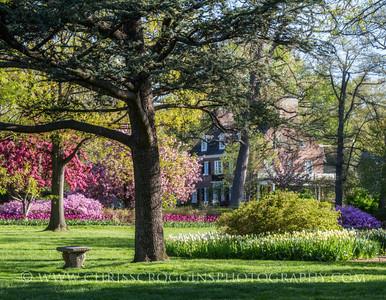 Sherwood Gardens 9