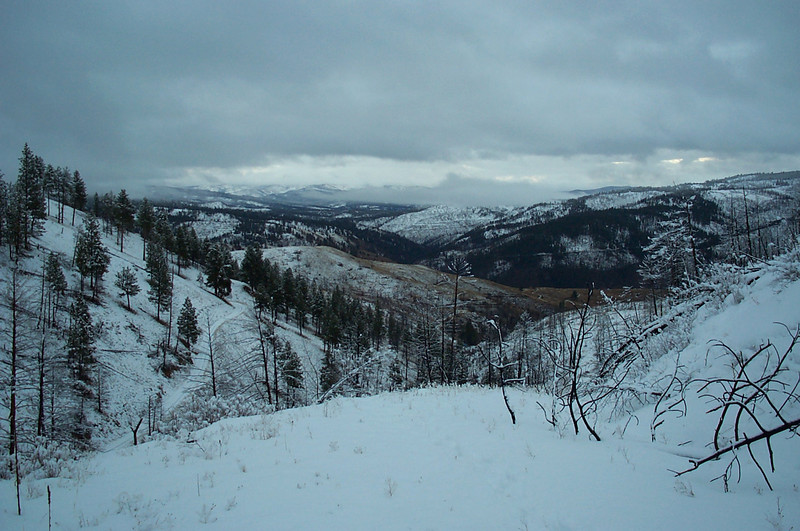 4 mile road, above cori+dave's near darby (montana)