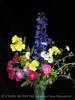 Bouquet wDelphinium