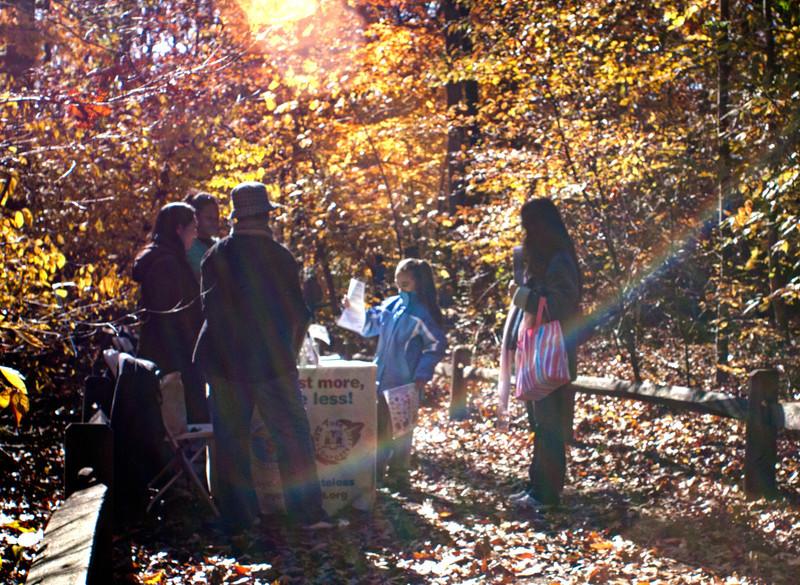 Our neighbors - NYC Composting