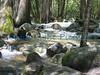 Bridalveil creek below the falls.