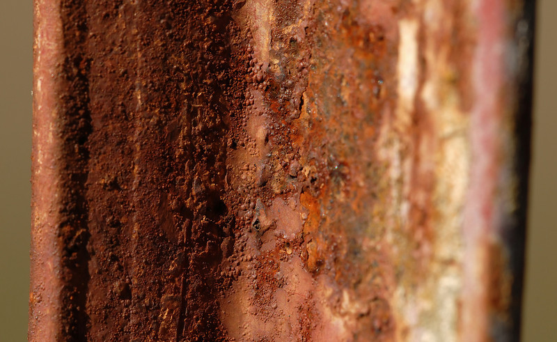 A rusted iron fencepost -- I think I can get into the texture aspect of macro work.