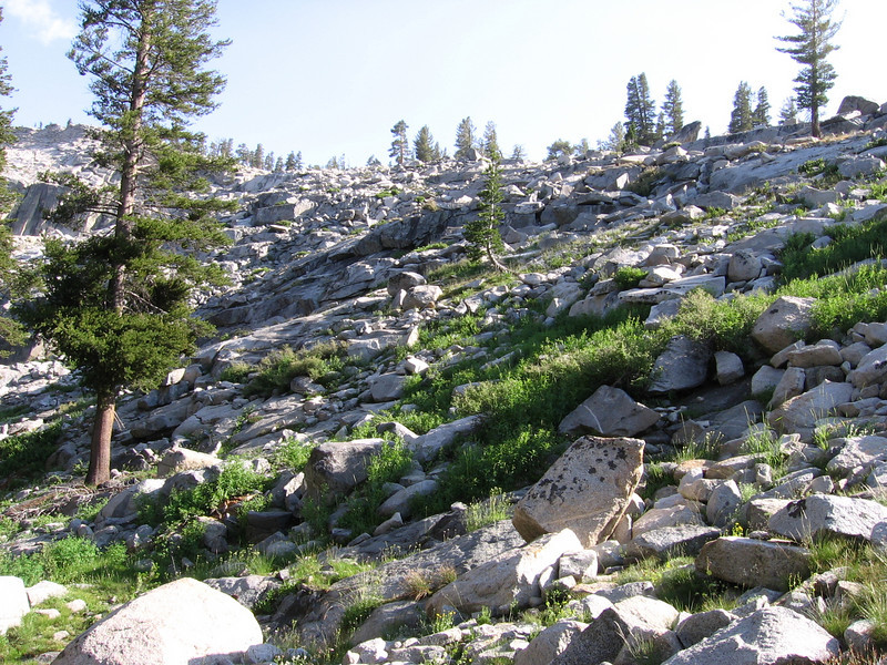 Looking upslope at the talus field. The big rocks are actually fairly easy to hike through; the things to avoid are the green patches of brush.
