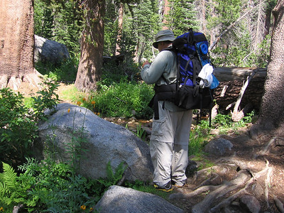 Heading east toward Twin Lakes and Silliman Pass, at the crossing of the East Fork of Clover Creek.