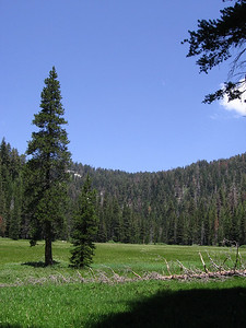 Another view of Cahoon Meadow and Gap. And just what is a Cahoon anyway?  ;-)