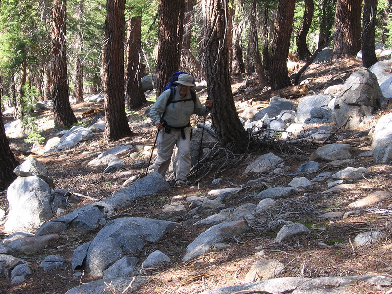 Off-trail again, staying a bit below the 9200 ft. contour while heading mostly south. The forest was in pretty good shape here, with little undergrowth or fallen trees. These forests benefit from occasional fires which keep the mature trees fertilized and make off-trail hikers happy with the open park-like feel.