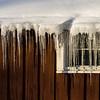 Ice Sickels - Harrimann State Park