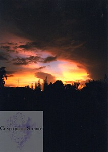and then the hurricane really began.  Here comes Hurricane George. This Image is © Tricia Chatterton Goldrick/Chattergold Studios.  All Rights Reserved.  No duplication without permission (see commercial downloads).  This image may be purchased from this website for blogging purposes only.