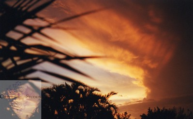 The sky became more orange...then red... and then black. This Image is © Tricia Chatterton Goldrick/Chattergold Studios.  All Rights Reserved.  No duplication without permission (see commercial downloads).  This image may be purchased from this website for blogging purposes only.