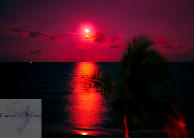 Full Moon Under a Blood Red Sky This Image is © Tricia Chatterton Goldrick/Chattergold Studios.  All Rights Reserved.  No duplication without permission (see commercial downloads).  This image may be purchased from this website for blogging purposes only.