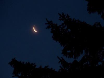 Morning moon - Jan 19, 2011. Location Betehl Park, PA.