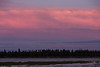 Across the Moose River towards Charles Island from Moosonee before sunset. Osprey above the river.