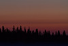 Butler Island in the Moose River before sunrise.