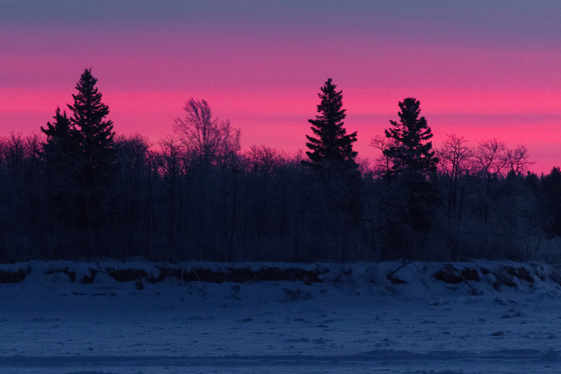 Looking across the Moose River from Moosonee before sunrise. Trees on south end of Butler Island.
