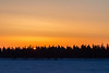 Sunrise over Butler Island in the Moose River across from Moosonee. The sun starts to peak between the tree tops.