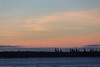 Looking across the Moose River from Moosonee around sunrise.