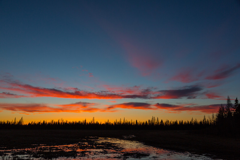 Clouds after sunset reflected in boggy ground past tracks.
