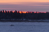 Vehicles on winter road across the Moose River around sunrise.