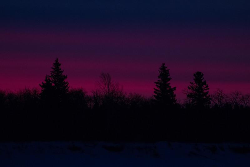 Sky before sunrise across the Moose River from Moosonee. Trees on Butler Island.