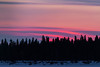 Sky before sunrise over Butler Island in the Moose River at Moosonee, Ontario.