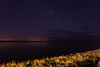 Looking across the Moose River at night.