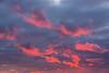 Purple clouds before sunrise.