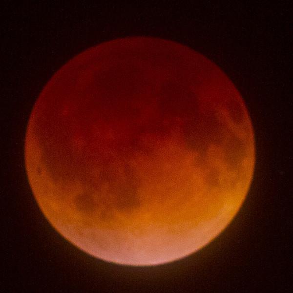 Lunar eclipse. A little extra saturation :-)