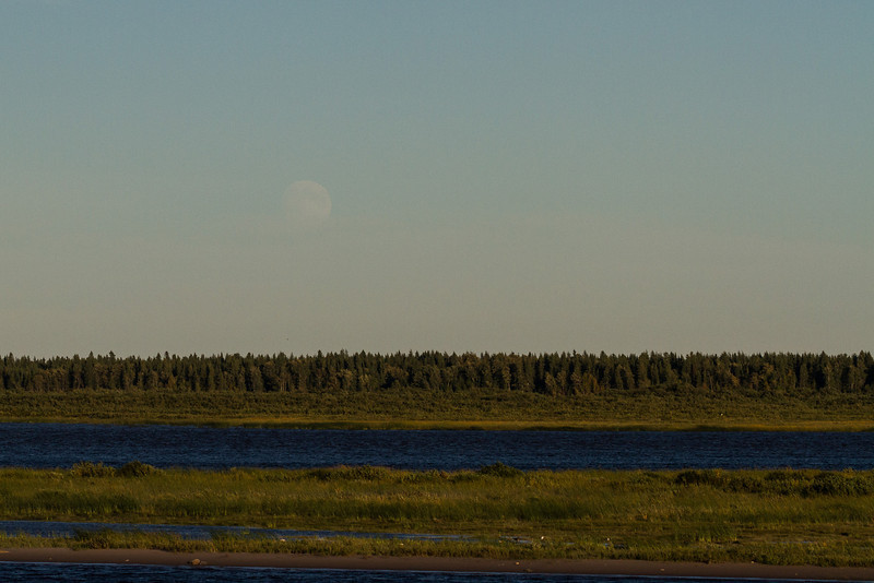 Moon over the Moose River. Just visible in the late afternoon light.