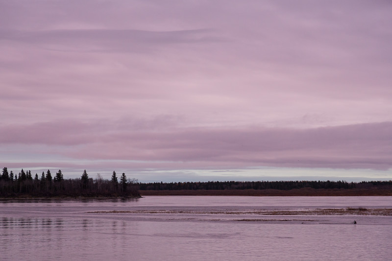 Sky before sunrise over the Moose River at Moosonee. Dulll but clouds have some purple colour.