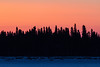 Sky before sunrise over the trees of Butler Island in the Moose River across from Moosonee.