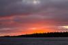 Sky before sunrise at Moosonee looking across the Moose River. Flock of geese.