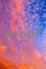 P1010383 Oct 4 2012 Mackeral sky sunset w:o tree 9 5x14 tc