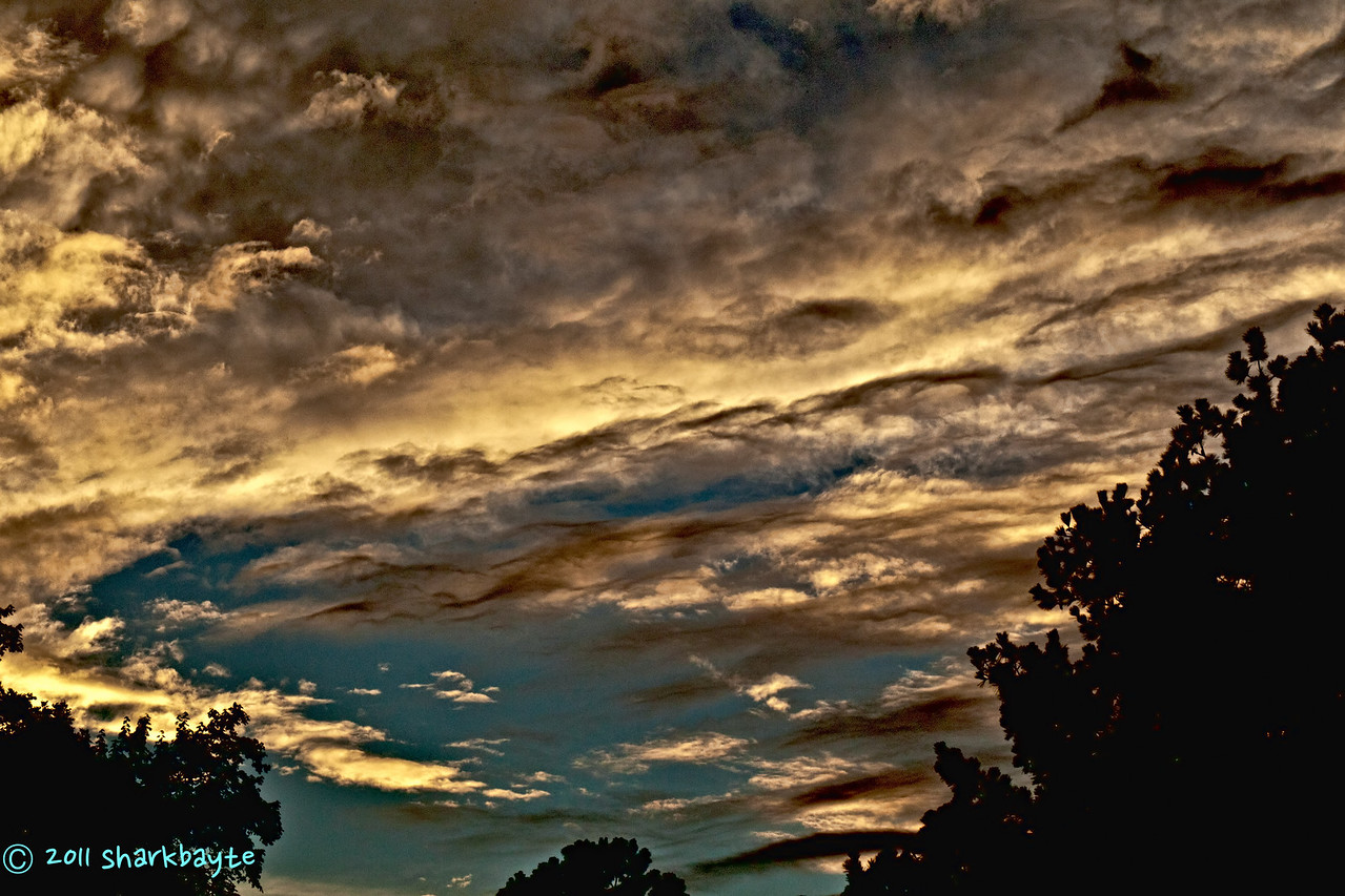 August 17, 2011-This was the sky the other night before the rain came. I love when the clouds put on a show. (229:365)