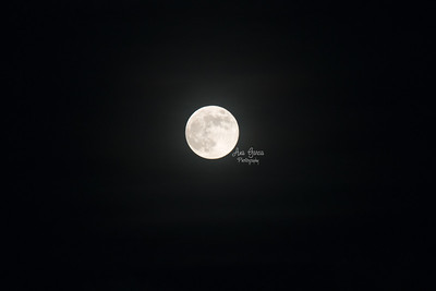 Supermoon (also known as Harvest Moon |  #AnaGarciaPhoto #AnaGarciaPhotography