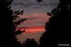 sky 3 hours later (settings: 100.0mm 1/200s f/2.8 ISO: 250) @sharkbayte