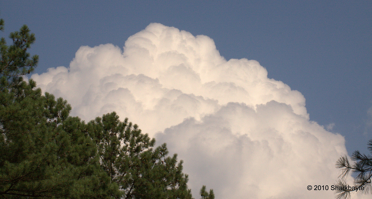 The clouds were so puffy today, just had to take a few shots.
