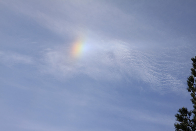 I captured this sundog today while out in the neighborhood.