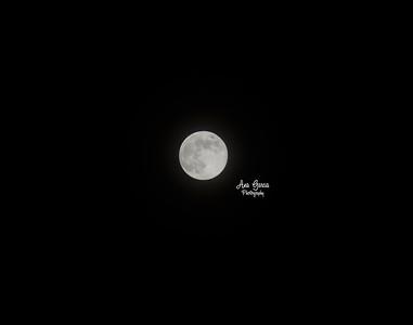 Blue Moon 8/20/2013