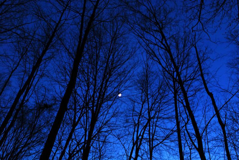 Blue Twilight 022-B