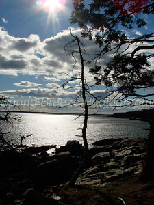 Ocean path trail from sand beach to Otter cliff - Acadia National park Maine Oct 2010
