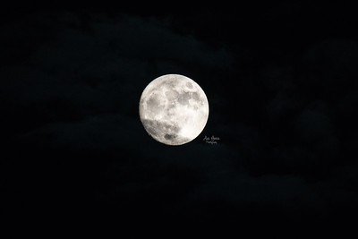 Almost Blue Full Moon | October 2020