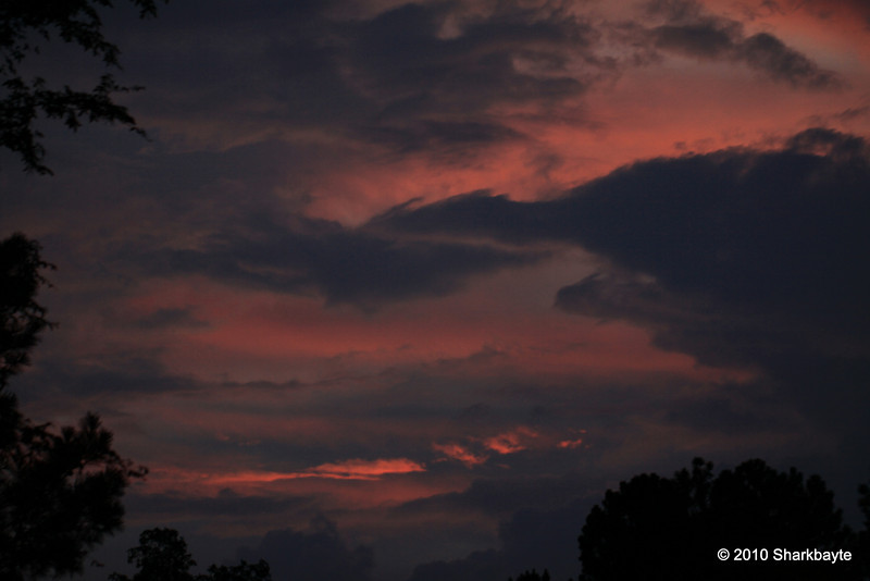 Day 202/365-Red or Pink sky... Looks like tomorrow is going to be a great day. SOOC no tweaks what so ever. #365Project Settings: 100.0mm f/2.8 1/50s ISO: 200 @sharkbayte