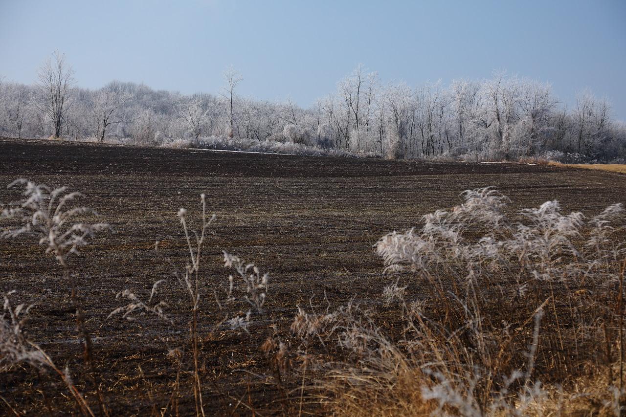 A Tavasz és a Tél küzdelme