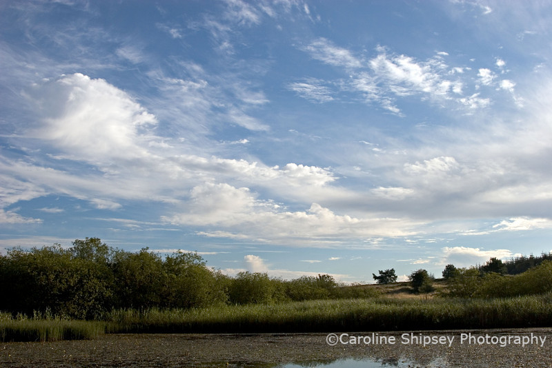 From the top pond towards Stockhill Skyscapes