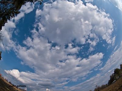 Skywards