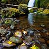Wahclella Falls near Bonneville Dam, Columbia River Gorge, OR