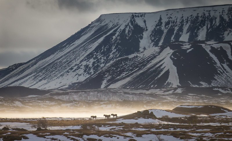 Collyer_Iceland-1577