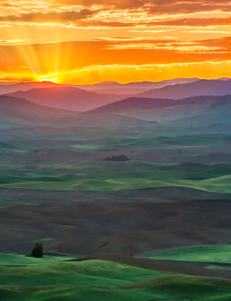 Purple Mountains Majesty - from Steptoe Butte